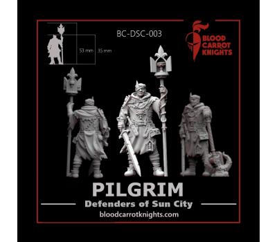 BloodCarrotKnights - The Pilgrim 28mm