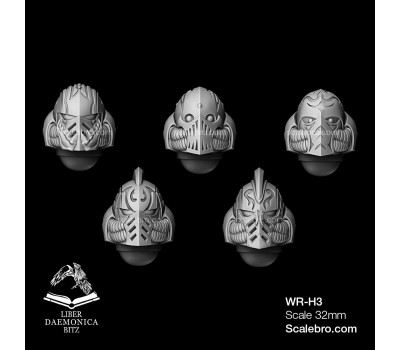 Helmets Shark type