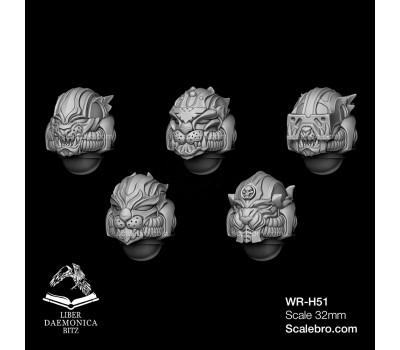 Helmets type  Lions