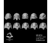 Shoulder Pads Raptor type