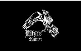 White Raven new wargames miniatures